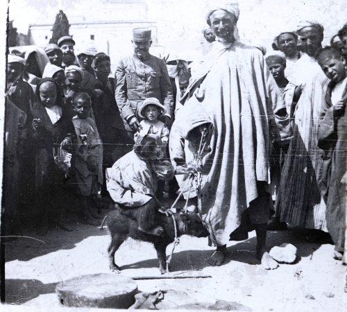 Sans titre, Maroc, 1915-1916, montreur d'animaux Photo ©Joseph Miquel