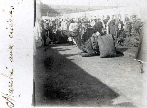 Maroc Marché aux céréales (1)