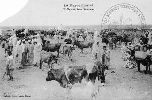 Carte postale - Un marché dans l'intérieur Maroc 1914